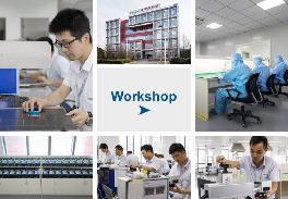 workshop at sino galvo
