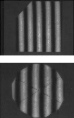 PLX_Figure4.jpg