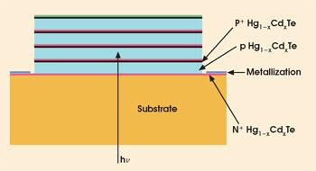 Vigo_Figure5.jpg