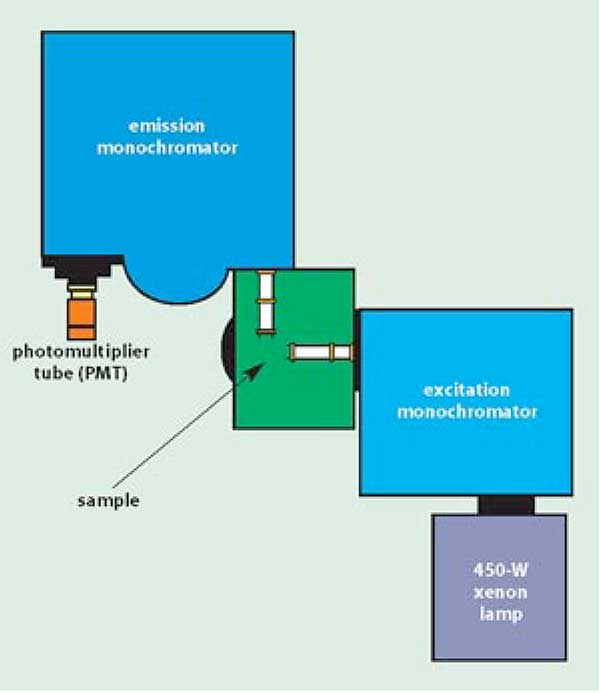 Experimental diagram of a fluorometer.
