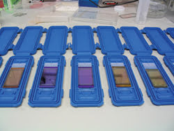 BRMicroarray-1-of-2_IMG_0582.jpg