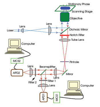 TSConfocal_Fig-1_Setup.jpg