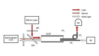 Raman Spectroscopy Detects Many Analytes At Once Jun 2007 Biophotonics