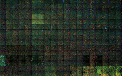 ImagingFeat_Abbot_HSC-fig1.jpg