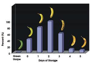 banana-ripening-graph.jpg