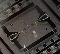 Quantum-Mechanics.jpg