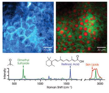 SNmolecules_Fig2.jpg