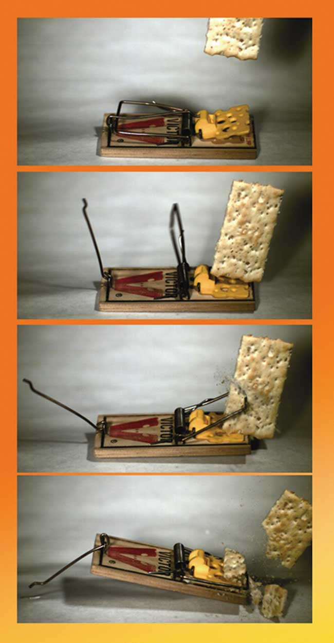 Image sequence of a mousetrap.