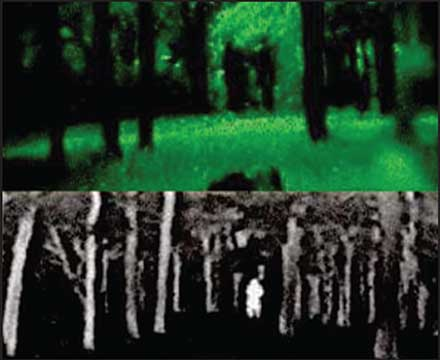 Woodline seen through Gen 3 night-vision device (top) and seen with IR technology (bottom).