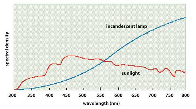 The spectrum of sunlight peaks at about 450 nm, while that of an incandescent lamp peaks at more than 800 nm.