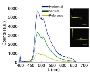 This image shows experimentally collected spectra from the trapped fluorescent microbead-BNA system (inverted orientation) with horizontal and vertical polarization (parallel and perpendicular to the bowtie axis, respectively).
