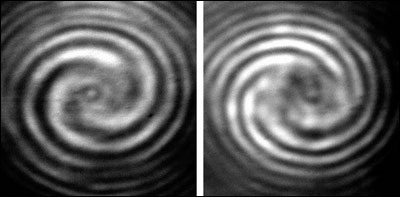 Interference patterns of the generated optical vortex with left or right hand circularly polarized reference beam (LHCP or RHCP).
