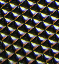 A microscopic image of a silk optical implant created when purified silk protein is poured into molds in the shape of multiple microsized reflectors and then air-dried.