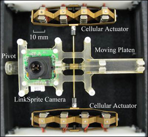 This photo shows the camera positioning system used by researchers Joshua Schultz and Jun Ueda from Georgia Tech's School of Mechanical Engineering.