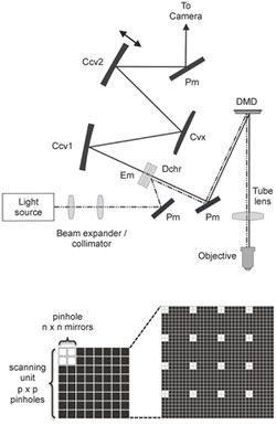 Schematic diagrams of the digital micromirror device (DMD) confocal optical pathway and the mirror arrangement for pinhole formation and scanning.
