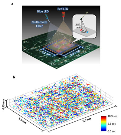 This illustration and data set depict the new microscopy technique developed by Ozcan and his colleagues at UCLA.