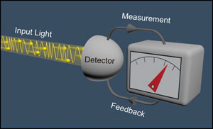 Input light, measurement, feedback