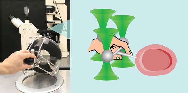 haptic optical tweezers