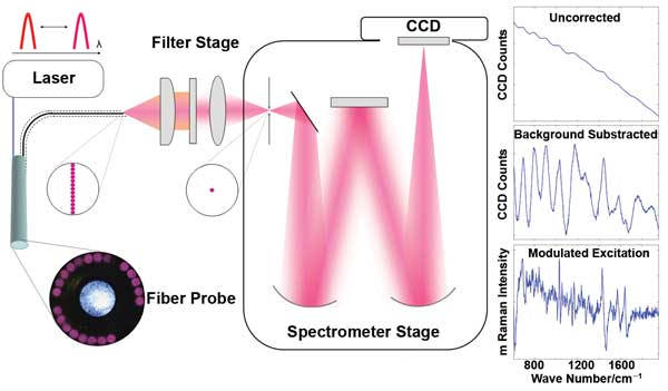 prototype wavelength-modulated Raman spectroscopy system