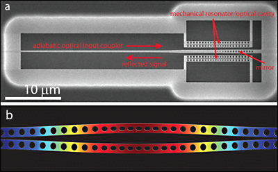 (a) SEM image of the silicon micromechanical resonator used to generate squeezed light. Light is coupled into the device using a narrow waveguide and reflects off a back mirror formed by a linear array of etched holes. Upon reflection, the light interacts with a pair of double-nanobeams (micromechanical resonator/optical cavity), which are deflected in a way that tends to cancel fluctuations in the light. (b) Numerical model of the differential in-plane motion of the nanobeams.