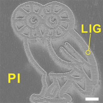 Laser-induced graphene image of the Rice University mascot