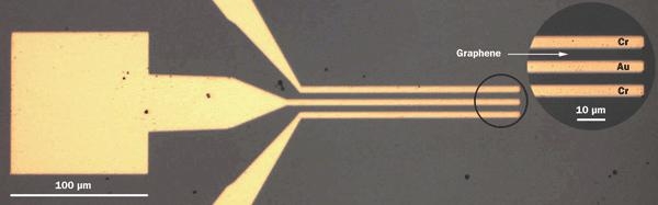 broadband ultrafast graphene detector