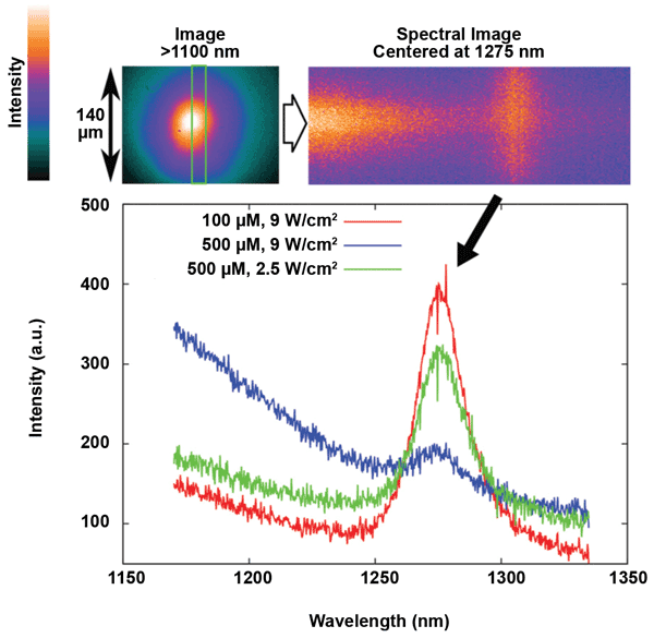 NIR spectra acquired from TMPyP solutions of two different concentrations under diverse excitation powers.