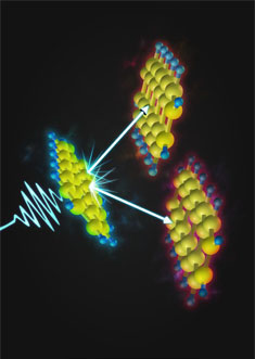 Pentacene molecules convert a single photon into two molecular excitations via the quantum mechanics of singlet fission.