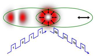 A conventional laser beam mimics quantum entanglement when it has a polarization-dependent shape.