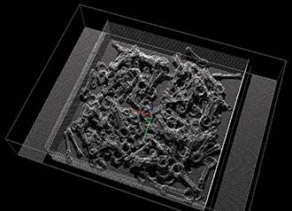 Point cloud generated by Fanuc's 3D Area Sensor of a bin full of connecting rods.