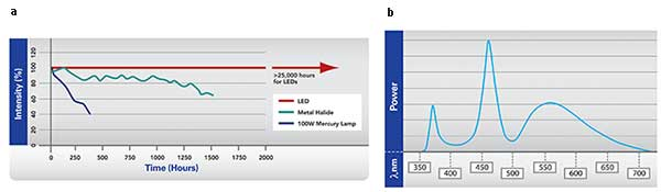 The intensity of LED-based light sources have a better lifetime and intensity stability than mercury or halide light sources (a).