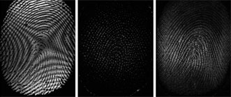 Comparison of an external fingerprint imaged conventionally (left) with sweat pores (center) and an internal fingerprint (right) imaged using full-field optical coherence tomography.