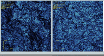 Olympus LEXT OLS4000 screen shots of area scans (20× objective) of the surfaces of scrapers used on fresh hide (UFH1) (left) and dry hide (UDH1) (right).