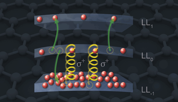 Graphene has displayed electron redistribution through Auger scattering.