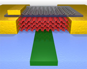 Black phosphorus photodetector
