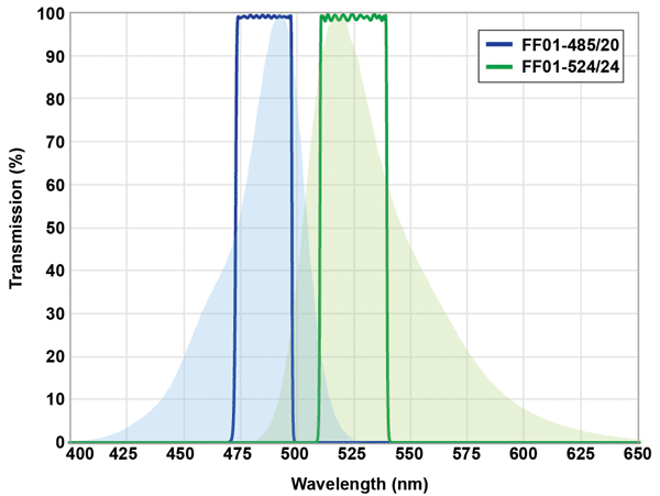 Modeling optical filter spectra for the fluorophore 5-FAM (5-carboxyfluorescein) in a PoC device application using SearchLight™.