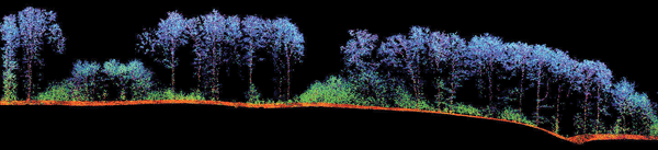 This 3-D image of a forest was generated from laser data collected using a new aerial surveillance method based on rapid IR pulses.
