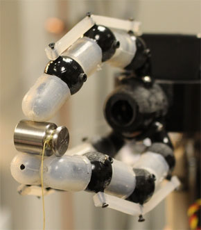 A new robotic hand features 14 embedded fiber Bragg grating sensors, allowing it to determine where its fingertips are in contact and to detect forces of less than a tenth of a newton.
