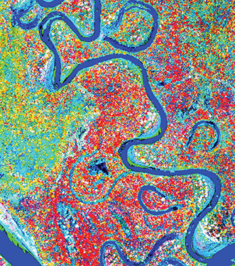 Airborne laser-guided imaging spectroscopy has enabled scientists to observe that lowland Amazon forests are grouped together in chemical communities based on the soils and the geographical features on which they grow.