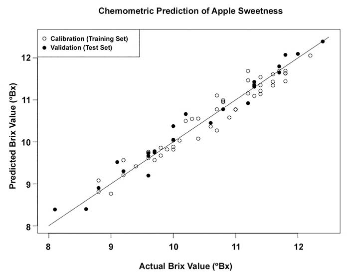 Comparison of the actual sweetness of apples (as measured in a lab as the Brix value) and the prediction of the Brix value based on the NIR diffuse reflectance spectrum.