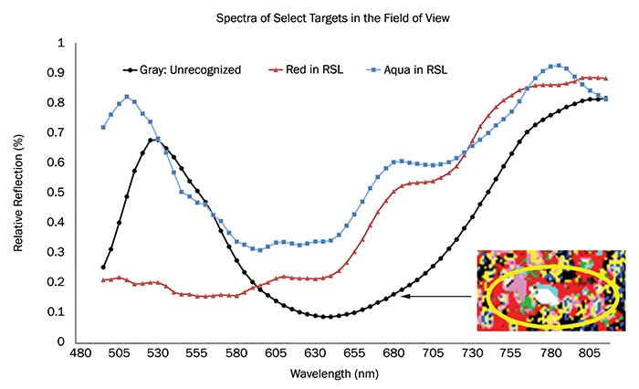 This graph indicates the percent-reflection plots of two RSL spectra and an unknown spectrum observed, as shown in the hyperspectral image in gray.