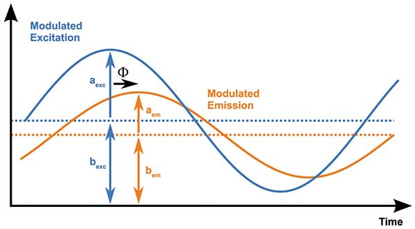 Characteristic parameters describing the involved sinusoidal light signals: excitation amplitude (aexc)and constant part (bexc), emission amplitude (aem) and constant part (bem) and the time delay or phase angle (F).