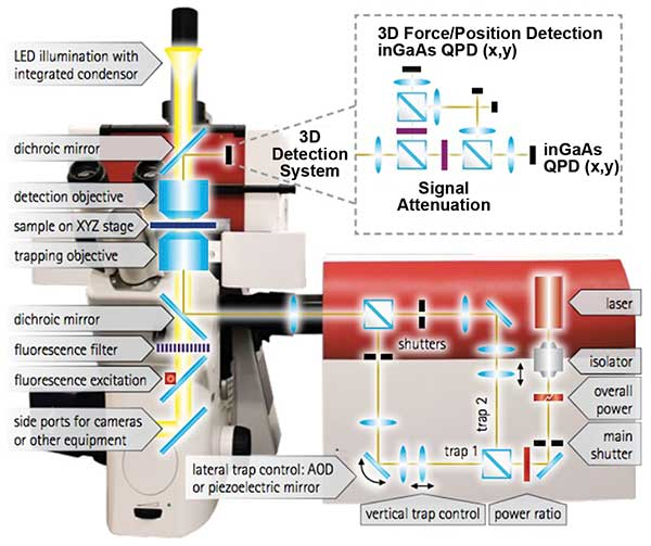 JPK Instrument's NanoTracker 2 is an integrated optical tweezers system.