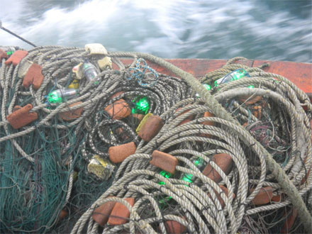 LED-lit fishnet used at sea