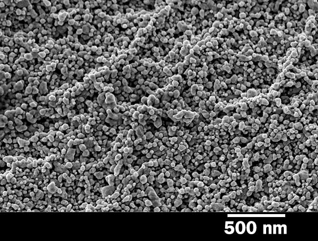 Close-up of the nanostructures grown on cotton textiles by RMIT University researchers.