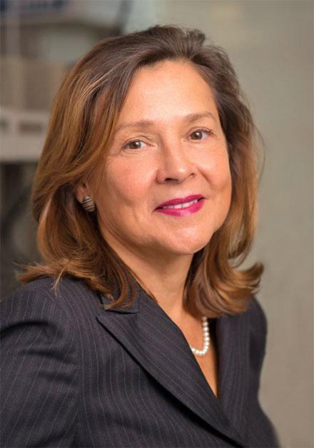 Lead scientist Naomi Halas.