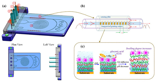 (a) Schematic design of the optical fiber biosensor integrated microfluidic chip: 1 are two inlets, 2 is outlet, 3 is a spiral mixture, 4 are optical fibers and 5 is the embedded LPG sensor. (b) The mode coupling and optical resonance in the long-period grating biosensor. (c) Working mechanism of the multilayer film for glucose sensing and signal enhancement.