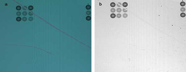 Polarization image (a) compared with a conventional, unfiltered image (b) of a printed circuitry.