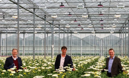 From left, Michael LeGoff, CEO of Plessey, Maarten Klein and Steve Edwards inspecting a trial using PhytoLux grow lights in Holland.