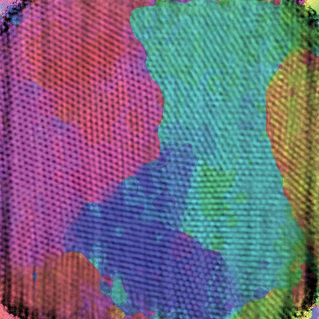 A close-up look at a butterfly wing reveals a patchwork map of lattices with slightly different orientations (colors added to illustrate the domains).